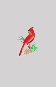 Go to record Cardinals in spring
